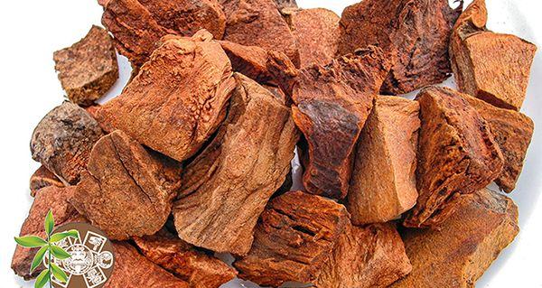 propiedades de la cocolmeca