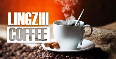 para que sirve el lingzhi coffee