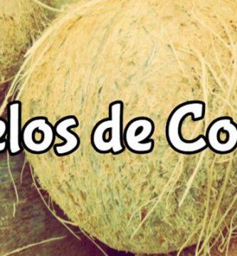 para que sirven los pelos de coco