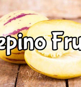 propiedades del pepino fruta